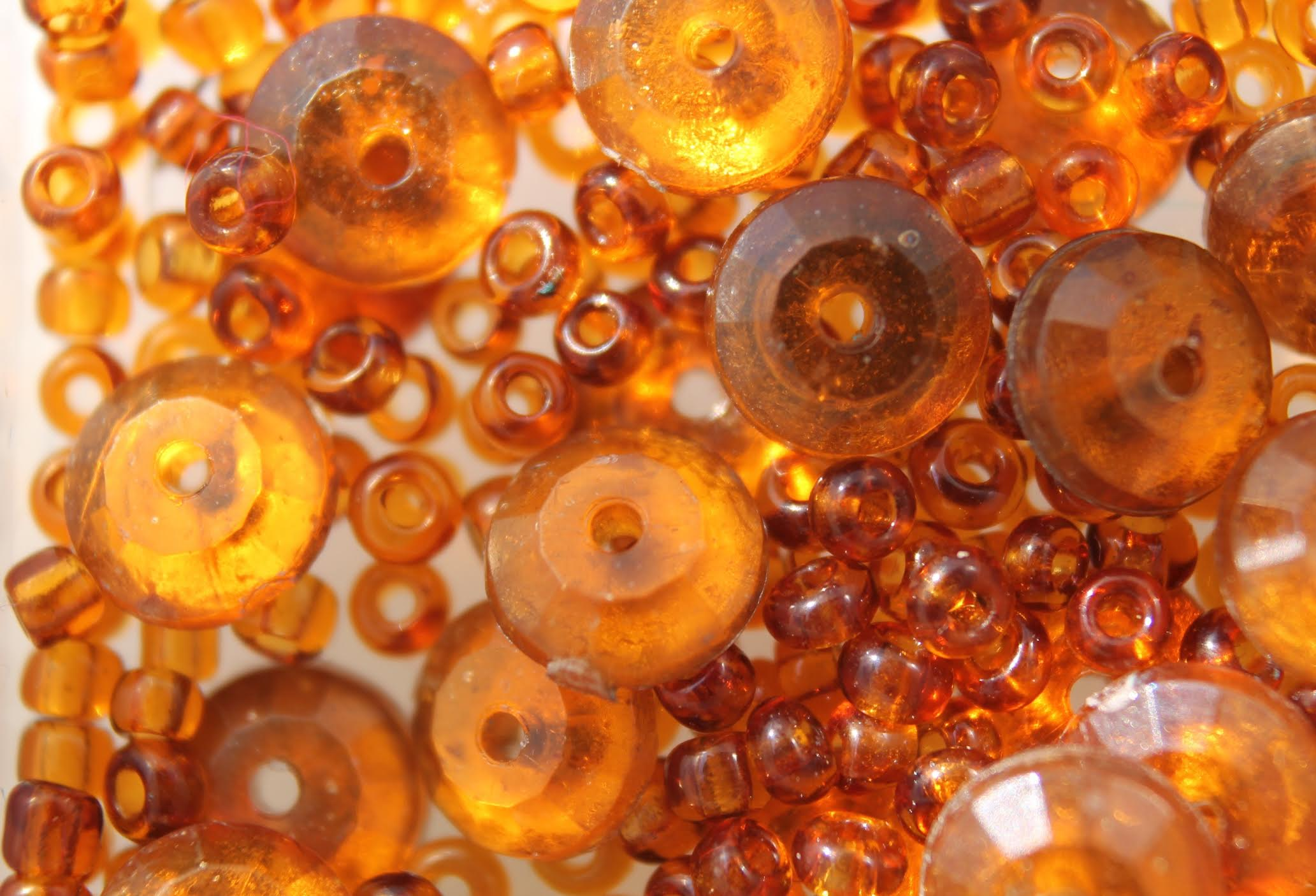 Baltic Amber: What Is It?!